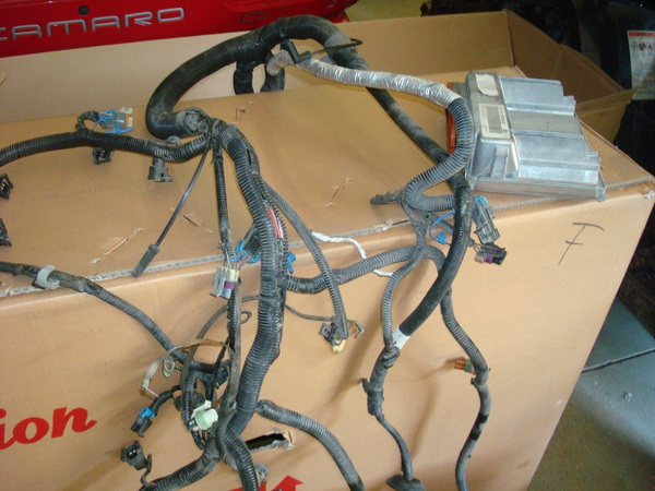 Ls wiring harness and original computer